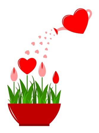 spring water:  heart flowers in pot and heart watering can isolated on white background