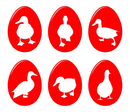 duck egg: collection of vector easter eggs with duck silhouette decor isolated on white background