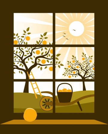 vector apple orchard outside the window Stock Vector - 18430039
