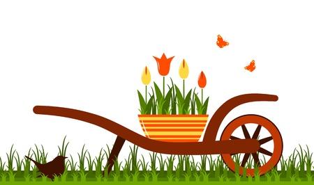 wheel barrow: vector wheel barrow and tulips in pot