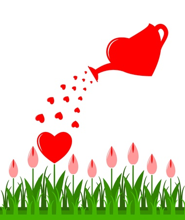 marriage bed: heart flowers and heart watering can isolated on white background