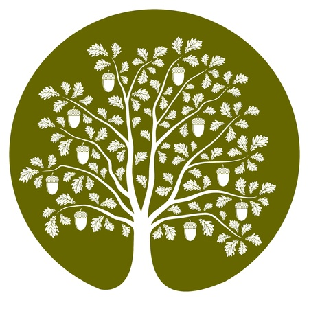 vector oak tree isolated on green round