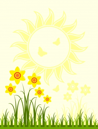 daffodils in grass and sun Stock Vector - 18905638