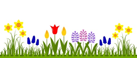 bed of spring flowers isolated on white background Illustration
