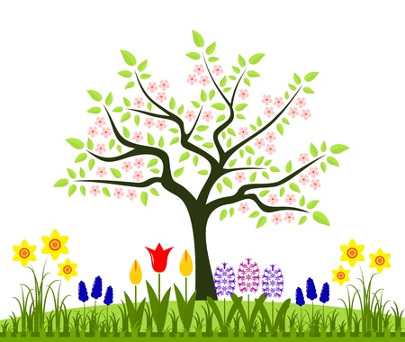 blooms:  bed of spring flowers and flowering tree isolated on white background Illustration