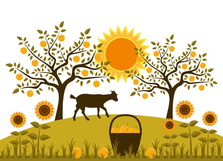 basket of apples, sunflowers and goat in garden