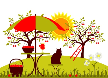 vector table with umbrella, basket of cherries and daisies in garden Vector