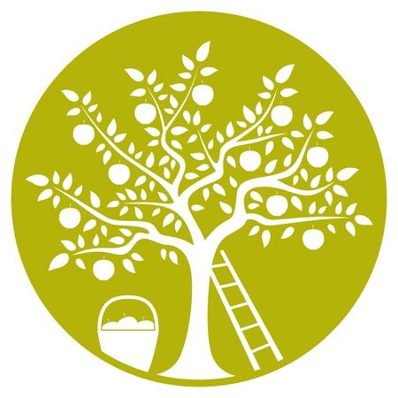 arbol de manzanas: manzano, escalera y una cesta de manzanas aisladas en verde ronda