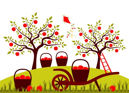 vector hand barrow and baskets of apples in apple orchard Vector