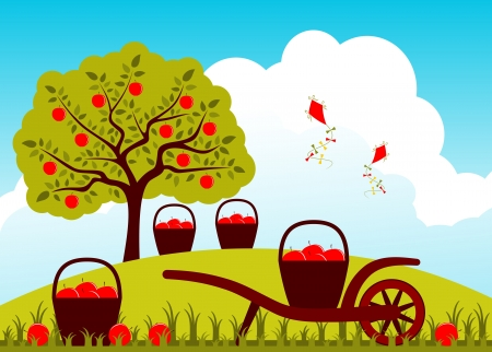 baskets of apples and hand barrow in apple orchard Vector