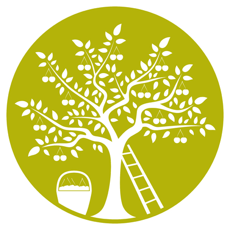 vector cherry tree, ladder and basket of cherries isolated on green round Vector