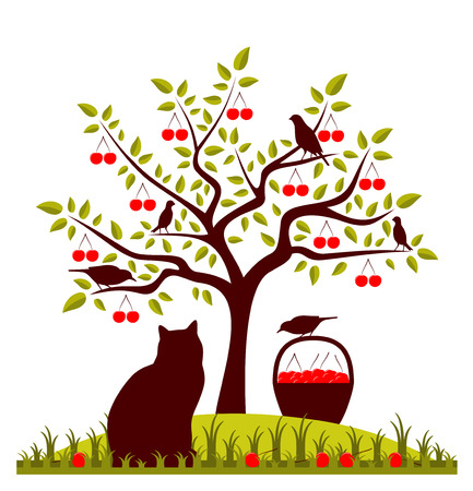 vector cherry tree, basket of cherries, cat and birds Vector
