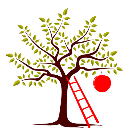 vector apple tree with one big apple and ladder isolated on white background Vector