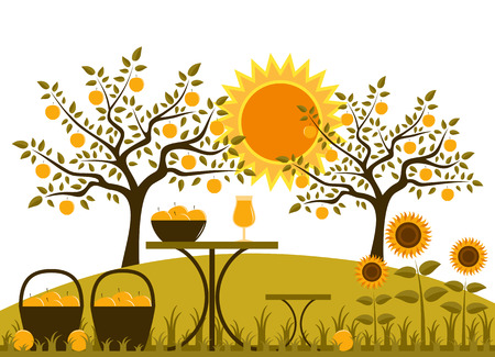 vector table with baskets of apples and sunflowers in garden Vector