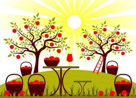 vector table with baskets of apples in garden Vector