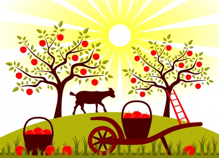 vector hand barrow with basket of apples and goat in garden Vector