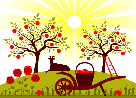 vector hand barrow with basket of apples and resting goat in garden Vector