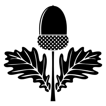 Vecteur gland avec des feuilles isolé sur fond blanc Banque d'images - 26591185