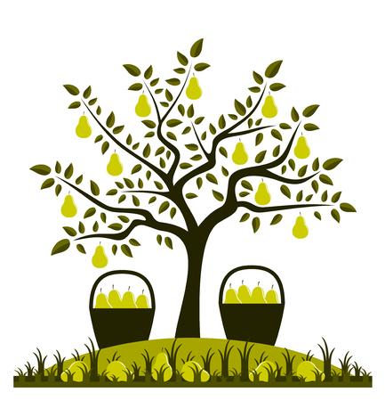vector perenboom en manden van peren