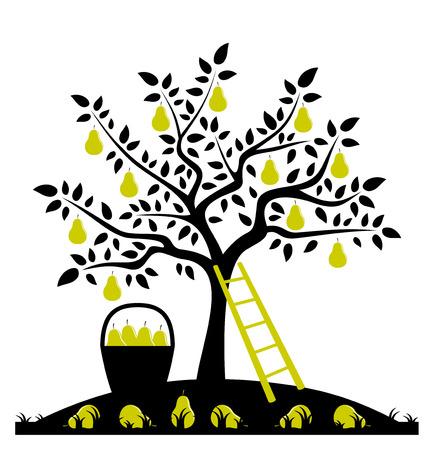 vector perenboom, ladder en mand van peren