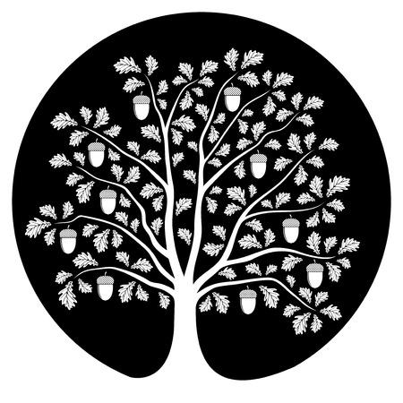 떡갈 나무는 검은 색 라운드에 고립