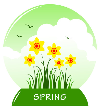 tuft: vector daffodils in ball isolated on white background Illustration
