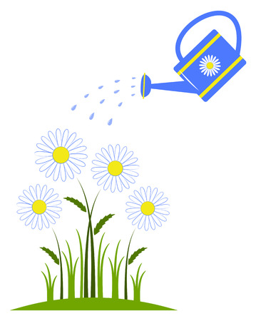 vector daisies and watering can isolated on white background Ilustracja