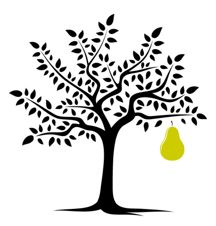 vector pear tree with one big pear isolated on white background Vector