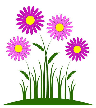 tuft: vector pink daisies isolated on white background