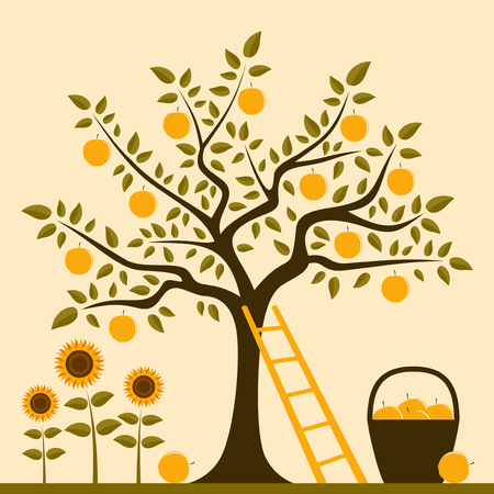 vector apple tree with ladder, basket of apples and sunflowers Vector