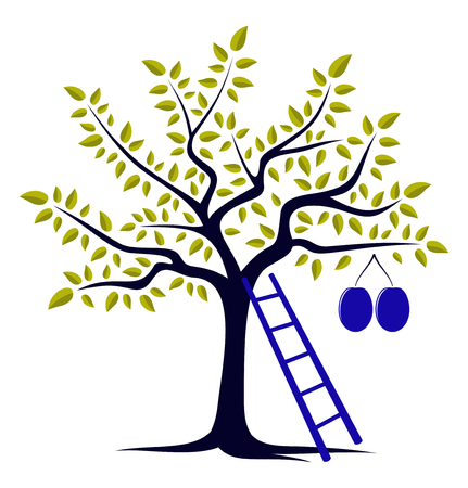 vector plum tree and ladder isolated on white background Stock Vector - 30534866