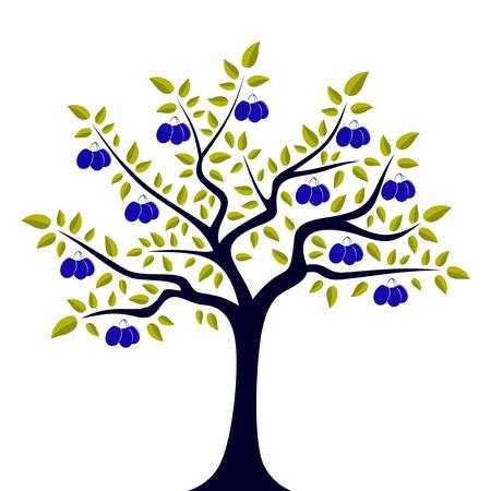 vector pruim boom geïsoleerd op witte achtergrond