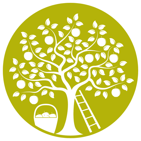 vector apple tree, ladder and basket of apples isolated on green round Vector
