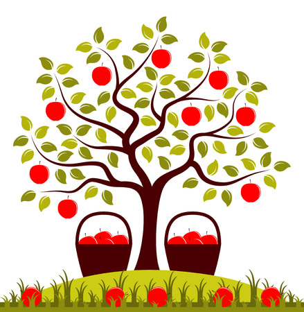 green apple isolated: vector apple tree and baskets of apples