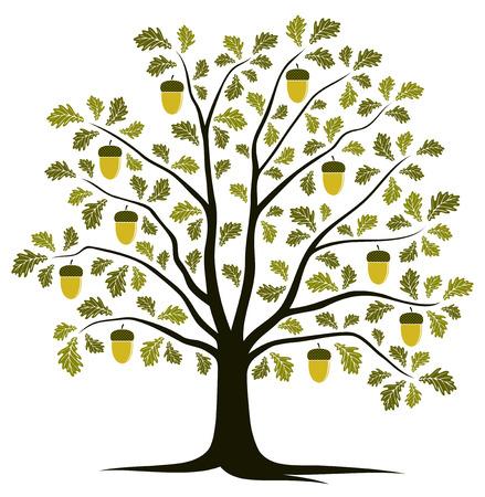 벡터 오크 나무는 흰색 배경에 고립