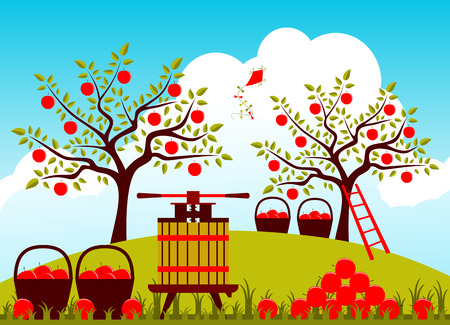 vector fruit press and baskets of apples in apple orchard Stock Illustratie