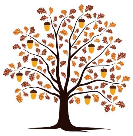 autumn oak tree isolated on white background Vector
