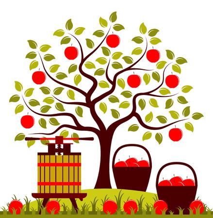 appelboom, manden van appelen en fruit druk