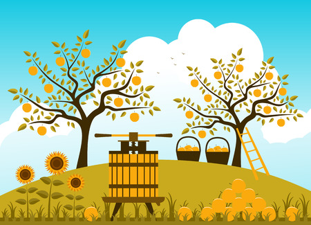 vector fruit press and baskets of apples in apple orchard Vector