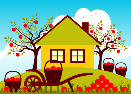 hand barrow, baskets of apples and pile of apples in garden Vector