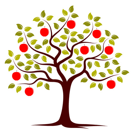 apple orchard: vector apple tree isolated on white background