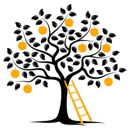 vector apple tree and ladder isolated on white background Vector