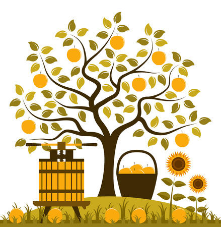 vector apple tree, basket of apples and fruit press