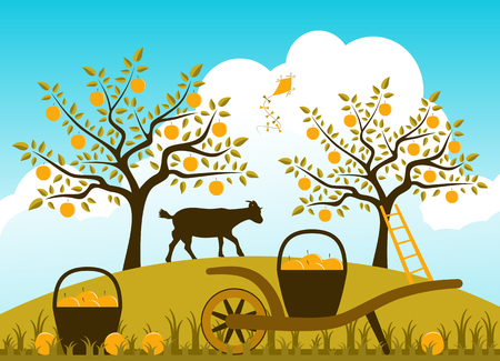 vector hand barrow with baskets of apples in apple orchard Vector