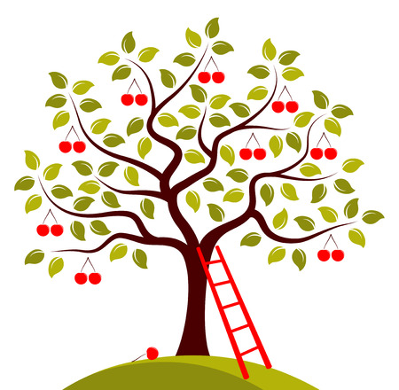 vector cherry tree and ladder isolated on white background