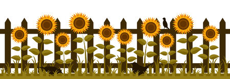 vector picket fence with sunflowers and birds isolated on white background