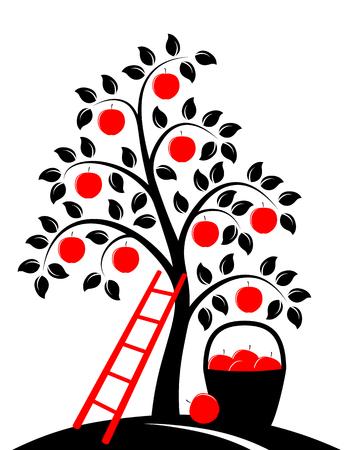 Vektor-Apfelbaum, Leiter und Korb von Äpfeln isoliert auf weißem Hintergrund Standard-Bild - 33178344