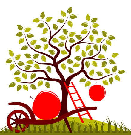 big apple: vector apple tree with one big apple, ladder and hand barrow with one apple Illustration