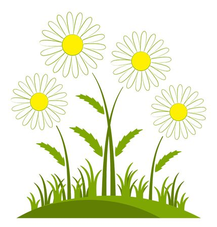 clump: vector clump of daisies isolated on white background