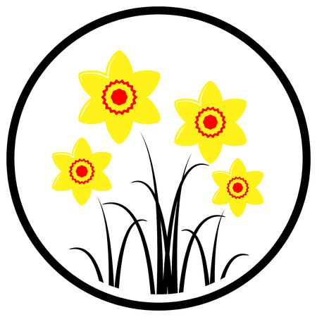 clump: vector clump of daffodils in round isolated on white background